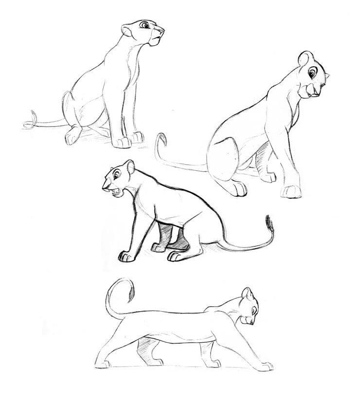 """""""Nala"""" from The Lion King -  Blog/Website 
