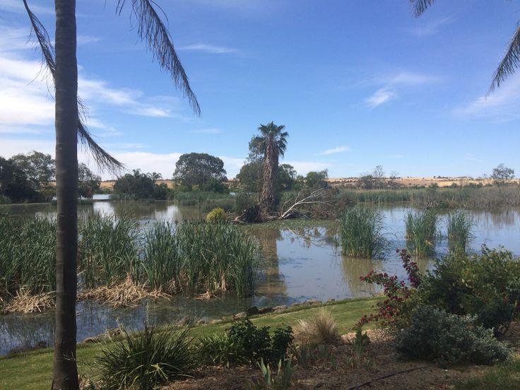 Across lake