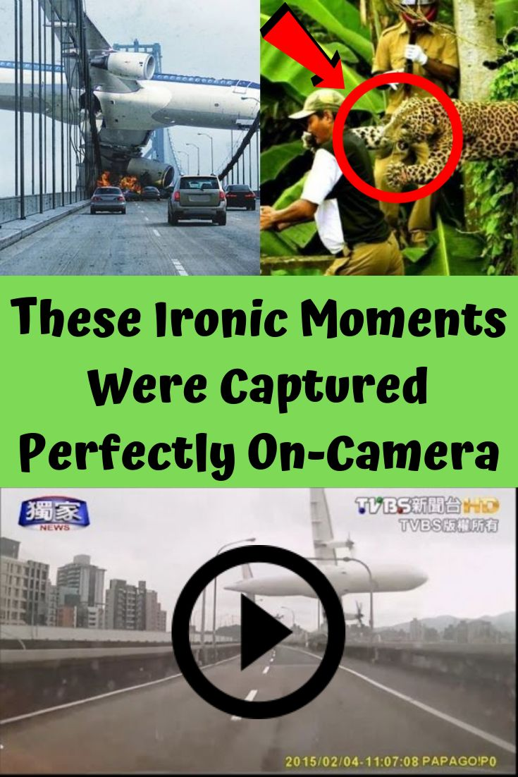 These Ironic Moments Were Captured Perfectly OnCamera