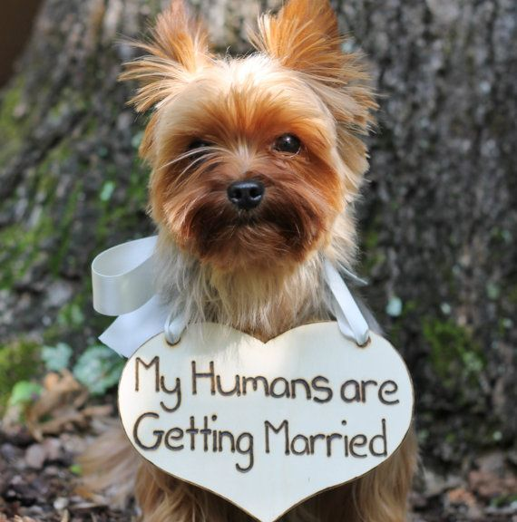 Puppy Sign My Humans are Getting Married by MichelesCottage, $38.50 OMG Duke is going to be in my wedding!