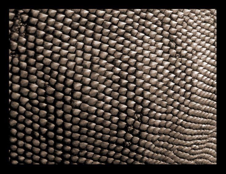 83 Best Texture Images On Pinterest Groomsmen Textures