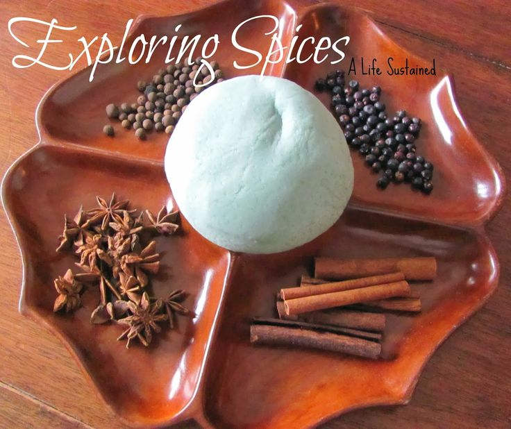 Exploring Spices and play dough :: Open ended Reggio Activity for toddlers and preschoolers :: Waldorf Winter Curriculum :: Animals in Winter :: Tracks in the Snow :: From A Life Sustained