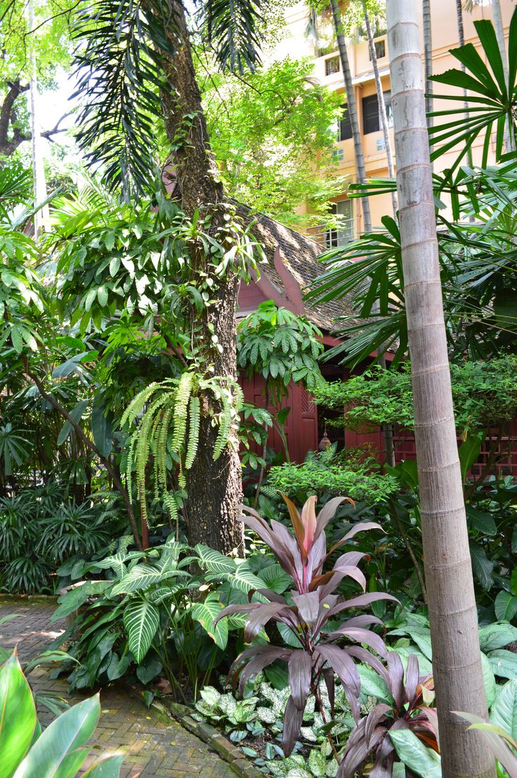 270 best Tropical Garden images on Pinterest | Gardening, Flowers and  Paradise
