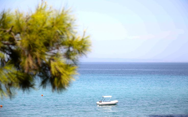 Blue Flag Awarded #beach Kriopigi Hotel  #Halkidiki #Greece  http://kriopigibeach.gr/