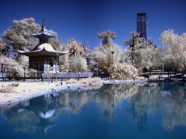 Jardín Japones. Japanese Garden. Buenos Aires, Argentina