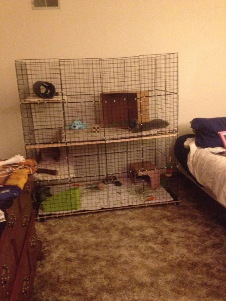 His New Home Diy Nic Rabbit Condo Rabbit Plans