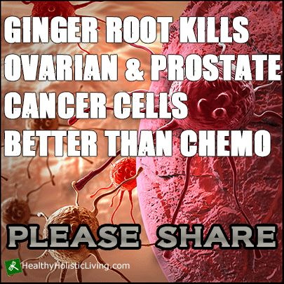 Thanks to research from the University of Michigan and nearly three centuries of medicinal use, we can now utilize ginger root to not only kill ovarian cancer cells, but also prostate cancer cells with zero toxicity