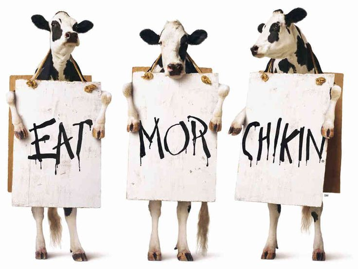 """chick-fil-a shirts 