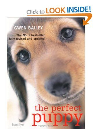 Perfect Puppy: Take Britain's Number One Puppy Care Book With You!: Amazon.co.uk: Gwen Bailey: Books