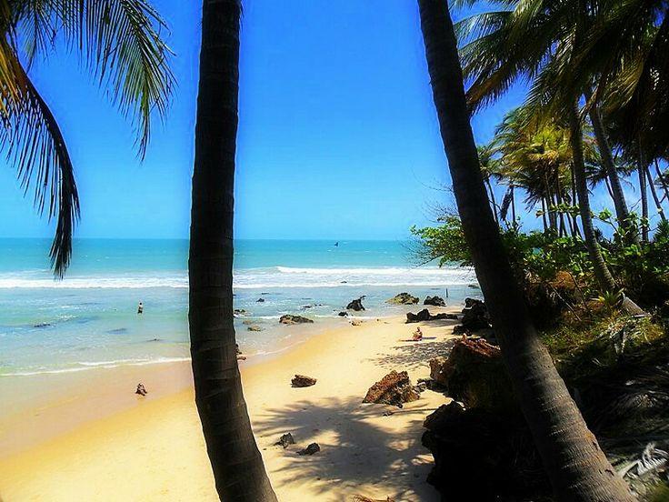 Billedresultat for taiba beach brazil