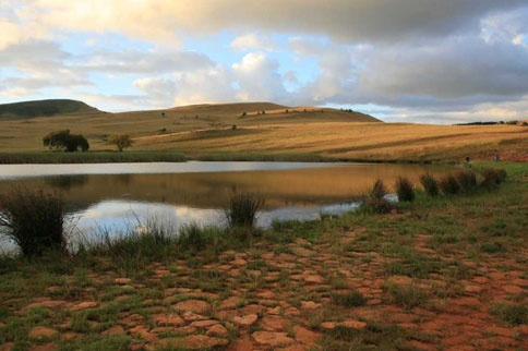Dullstroom / Lydenburg - Highland Giants Estate -pet friendly accomodation