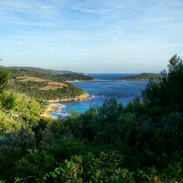 Cap Lardier à La Croix-Valmer, Provence-Alpes-Côte d'Azur.
