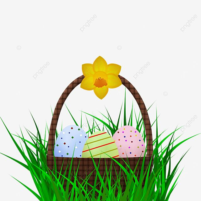 Easter Basket In Grass Easter Easter Egg Decorated Egg Png Transparent Clipart Image And Psd File For Free Download In 2021 Easter Baskets Painted Easter Baskets Egg Decorating