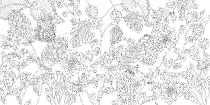 Millie Marotta's Tropical Wonderland: A Colouring Book