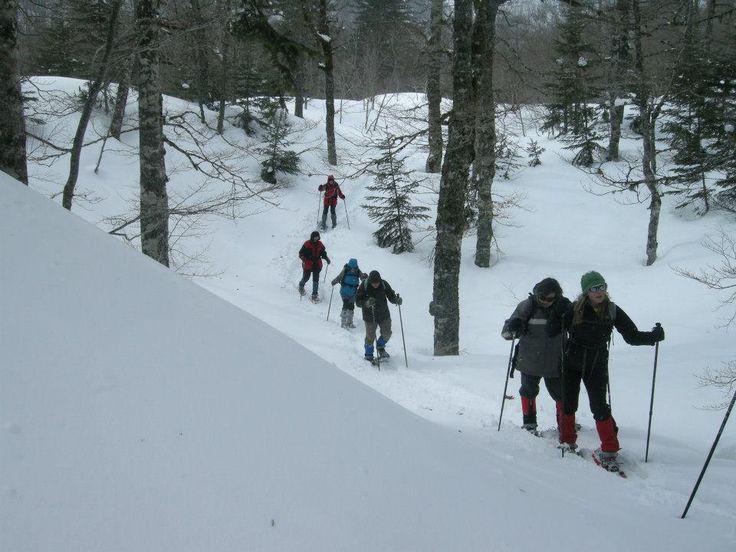 Raquetas de Nieve en Pirineo, Navarra. Mirua Actividades Naturaleza.