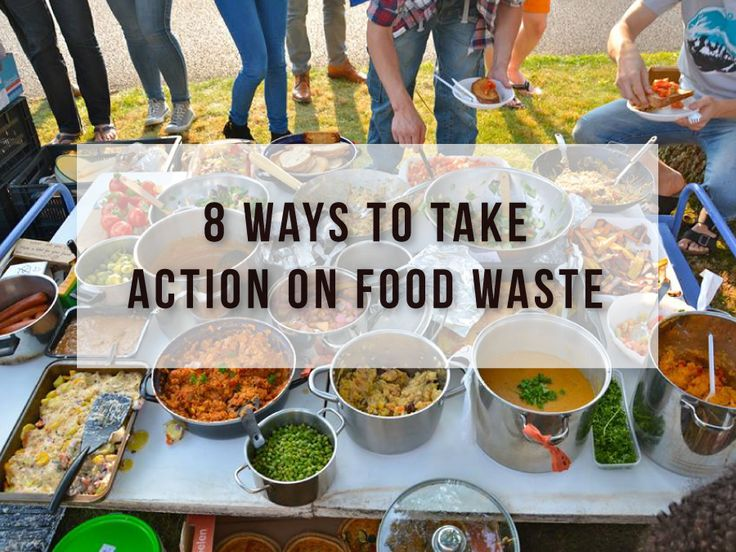 An essay on the wasted food in america