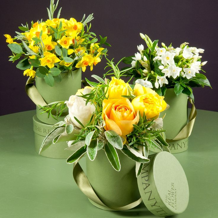 The Real Flower Company Spring Narcissi Hat Box Trio show cases exquisite scented yellow garden roses & scented Narcissi mixed with our garden herbs and foliage and is arranged in three of our beautiful mini hat boxes. Our hat boxes make wonderful keepsake's after the flowers have faded. A perfect birthday or thank you gift and a wonderful gesture for mother's day. Delivered in our signature green box which is hand tied with a satin floppy ribbon. You can also add a box of The Real Flower…