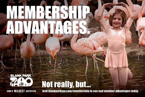 But Really... check it out at http://www.blankparkzoo.com/en/membership.cfm