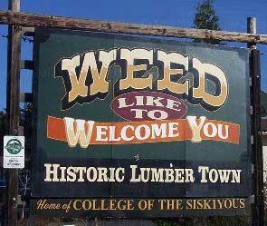+ Weed, California