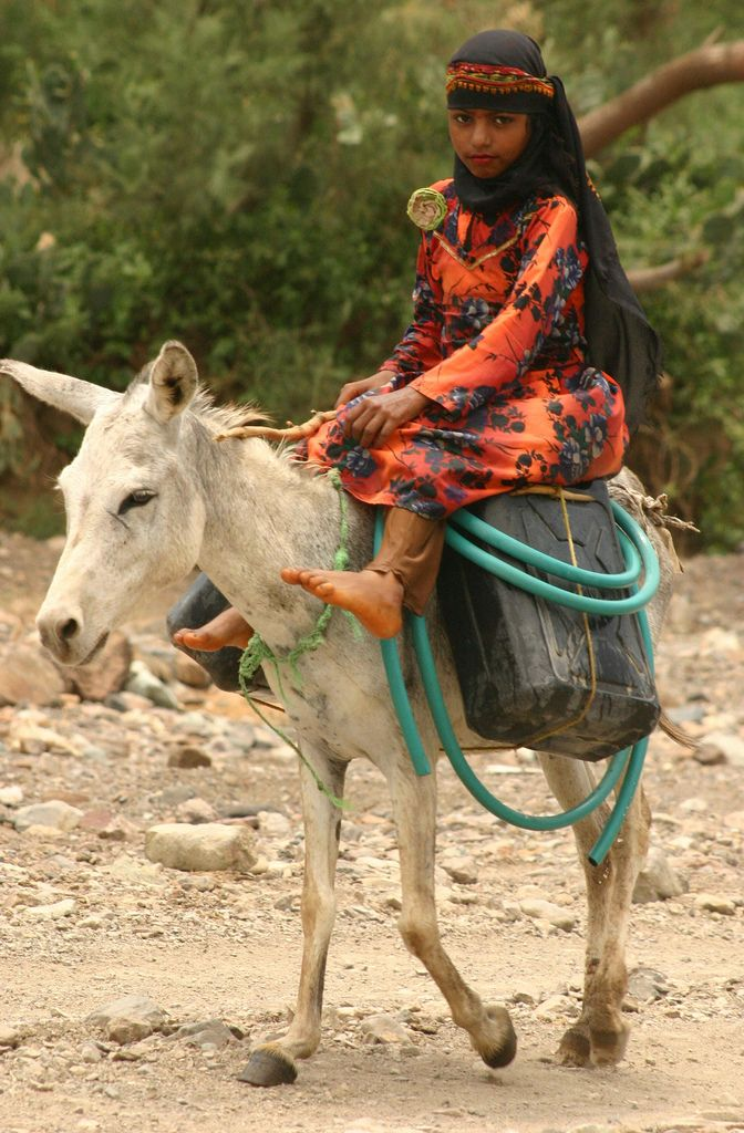 Transport of water with a donkey by a young Yemeni girl in the Wadi Surdud's valley. Photograph by Walter Callens