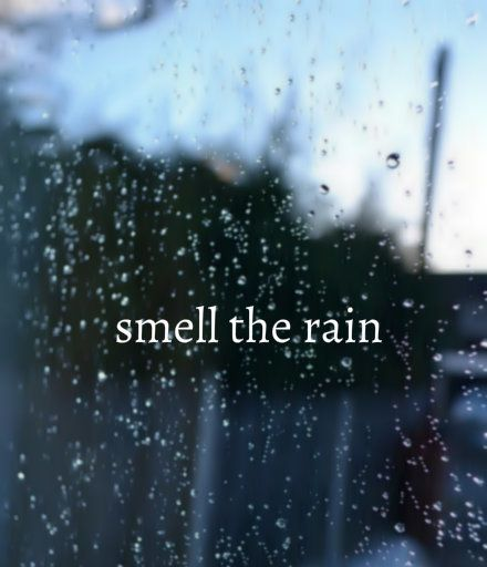Images and Words. Smell the rain