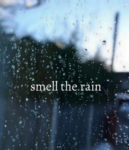 25+ best ideas about I love rain on Pinterest  Love rain quotes, Is it raini...
