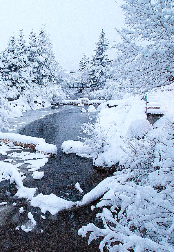 Snow in Estes Park, CO - so pretty. Wonder if I can talk the husband into visiting sometime in winter?.