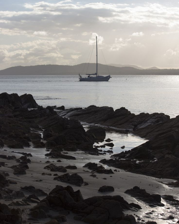 into the wind - Nelson Bay, June 2017 #beach #nature #landscape #outdoors #sea #sky #tranquil #scene #tranquility #transport #nautical #vessel #sailboat #transportation