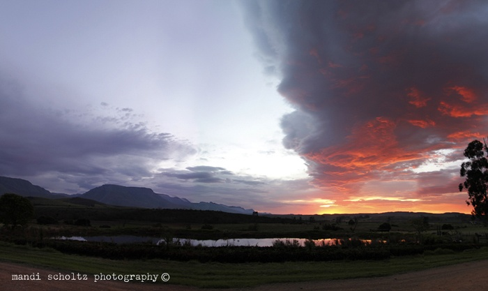 Taken on our beautiful farm in Riversdale. My favorite place in the world.   Photo- Mandi Scholtz