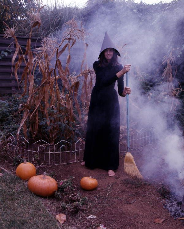 carolyn steinmetz dressed as a witch for halloween sarasota florida - Halloween History Witches