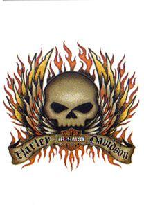 17 Best Images About Skulls On Pinterest Harley Davidson