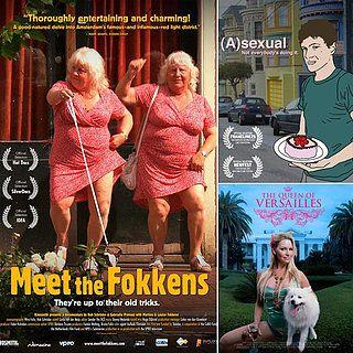 watch meet the fokkens