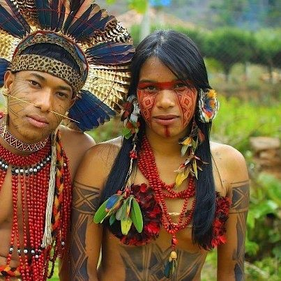 The Yanomami are a group of approximately 35,000 indigenous people who live in some 200-250 villages in the Amazon rainforest on the border between Venezuela and Brazil. Description from pinterest.com. I searched for this on bing.com/images