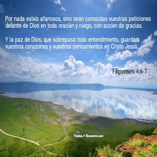 Y la paz de Dios, que sobrepasa todo entendimiento, guardará vuestros corazones y vuestros pensamientos en Cristo Jesús