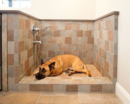 Dog Bath Design, Dog Washing Shower Room With Gray And Brown Tile Wall With  Gingham
