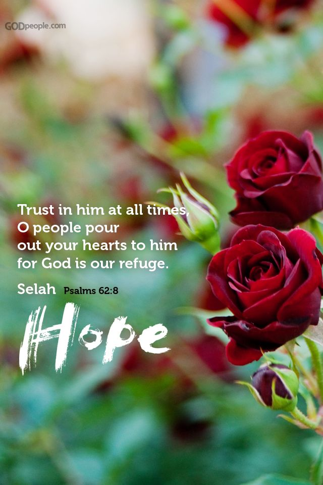 Trust in him at all times. O people, pour out your hearts to him for God is our refuge.  Psalm 62:8 Hope