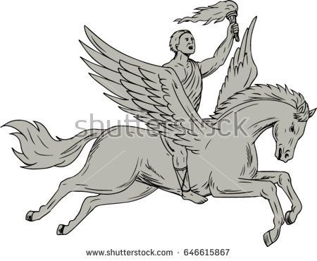 Drawing sketch style illustration of Bellerophon, a Greek mythology hero riding Pegasus, a winged horse-god divine stallion holding torch viewed from the side set on isolated white background.   #bellerophon #drawing #illustration