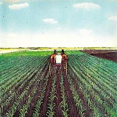 Taking care of the corn  A PRAIRIE BOY'S SUMMER (1975) William Kurelek
