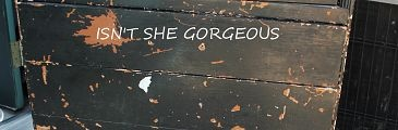 Come see my Dumpster DIVE turned Dumpster DIVA rescued Dresser in all her glory  My Father in law picked this up next to a dumpster and lovingly threw it in his truck for me. He KNEW I would love it. He was right. Even in the horrible shape it was in...I knew I ...»