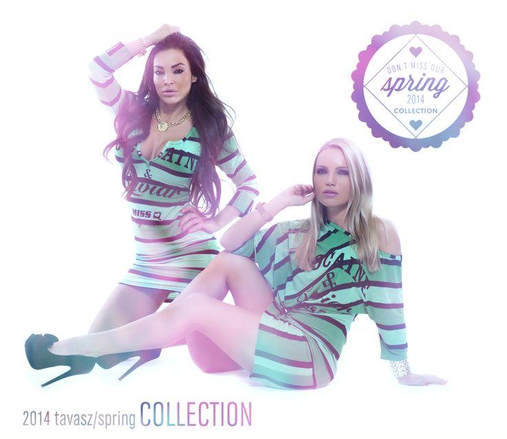 MSQ/Spring