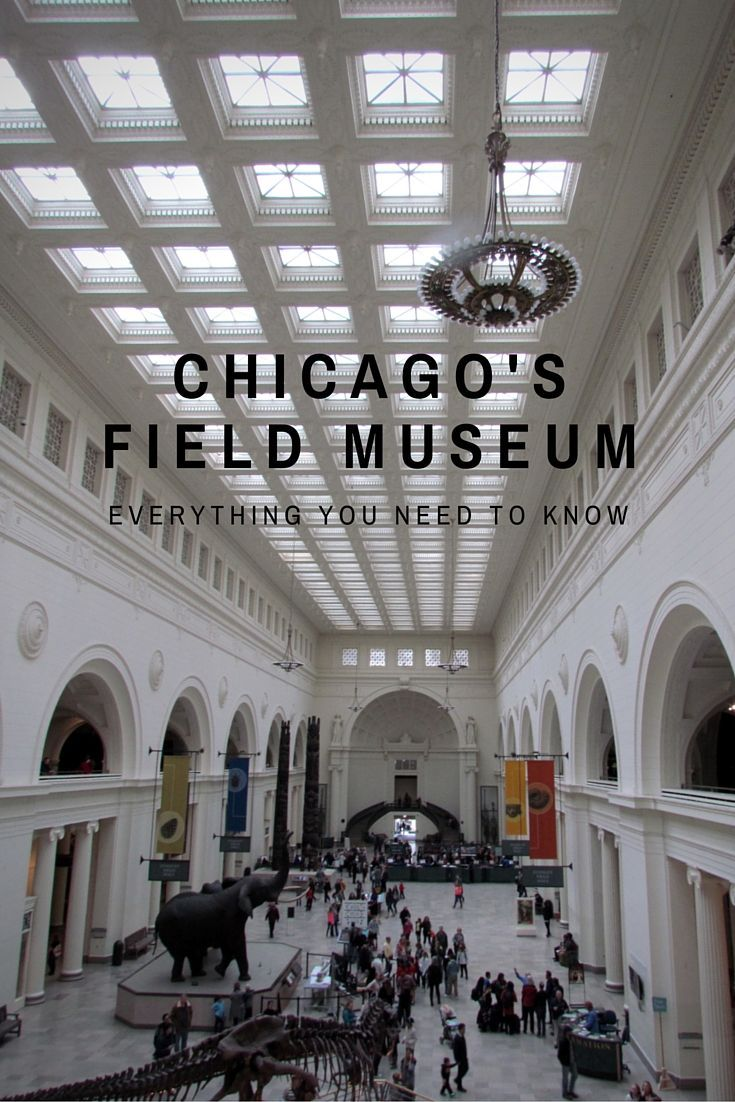 CHICAGO's FIELD MUSEUM-TMOM
