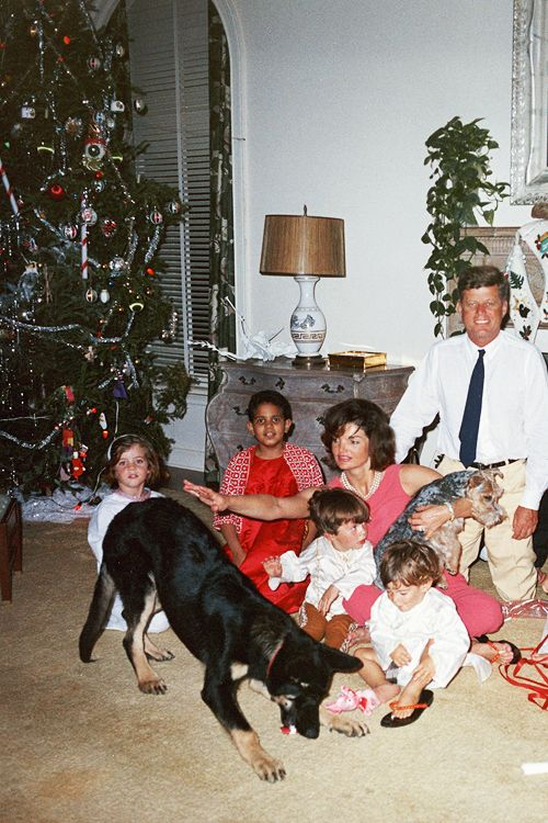 The Kennedy Family, Christmas, 1962...The Occupants of the White House Look Like Any Average American Family At Christmas...Unruly Dogs All...A Great Family Shot...