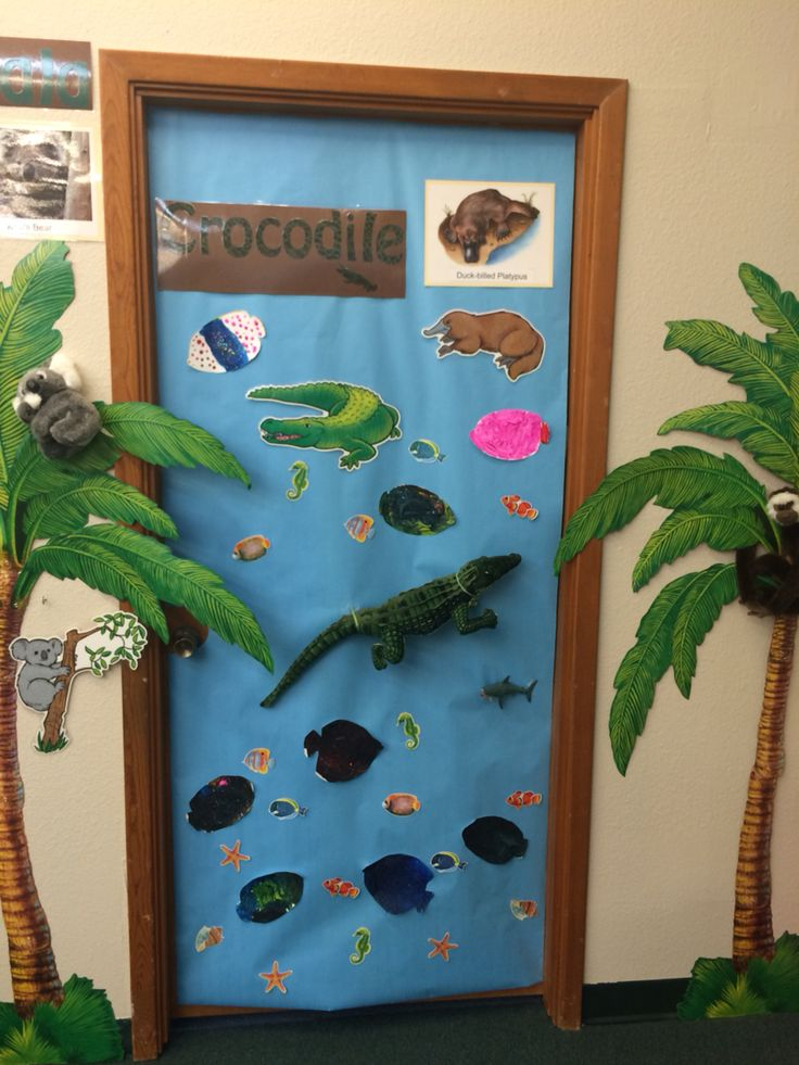 Croc's and Koala