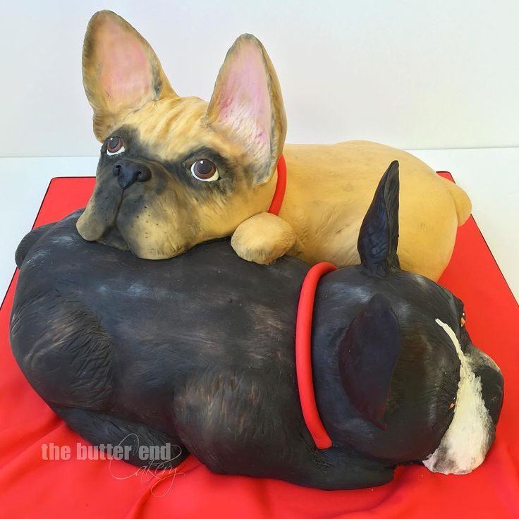 3-D sculpted French bulldog cake by The Butter End Cakery