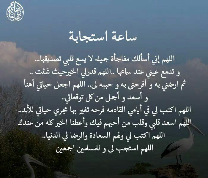 DesertRose,;,يالله,;,