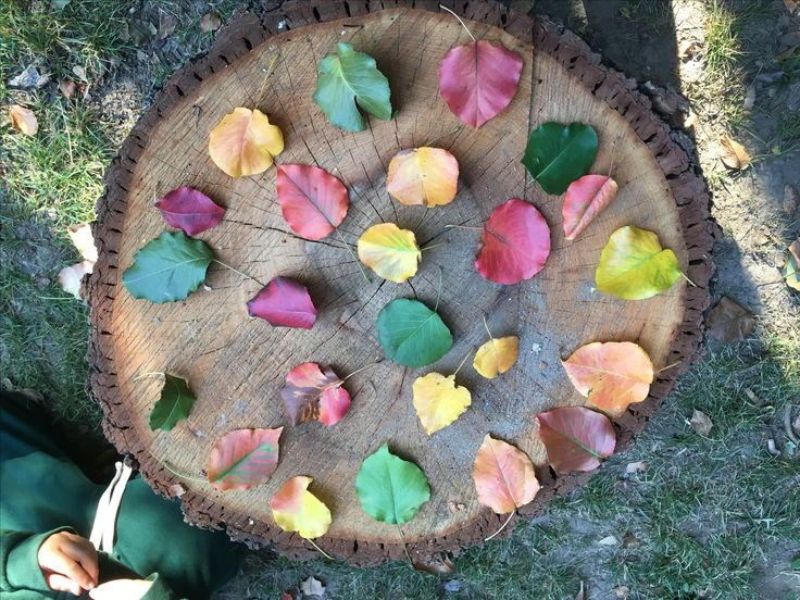 Creating simple centers outdoors is not only easy but economical. To demonstrate this – I want to share a simple center. Thiscentercould be a solo activity or group collaboration. OBJECTIVE: Sorting, Classifying, & Pattering. Sorting and classifying objects not only teaches children about attributes and relationships, but also promotes thinking logically and applying rules. MATERIALS: …