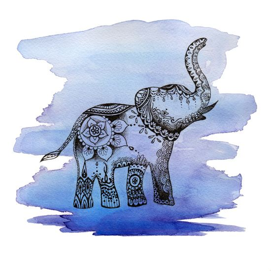 Watercolour Mandala Elephant Tattoo