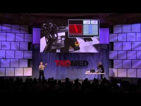 Just Hit Print: The Rise of 3D Bioprinting and the Future of Medicine (Part 3/3) - Ursa Sapiens - Jennifer Zeynab Maccani