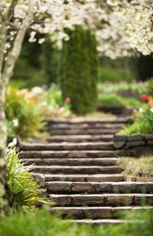 Image Result For Garden Blur Background Hd Download Nature