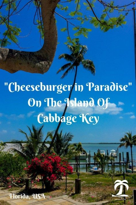 Cheeseburger in Paradise on the Island of Cabbage Key: 1AdventureTraveler. On a boating adventure in Florida I stumbled upon Cabbage Key. See whats special about this Florida Key. Travel in North America.